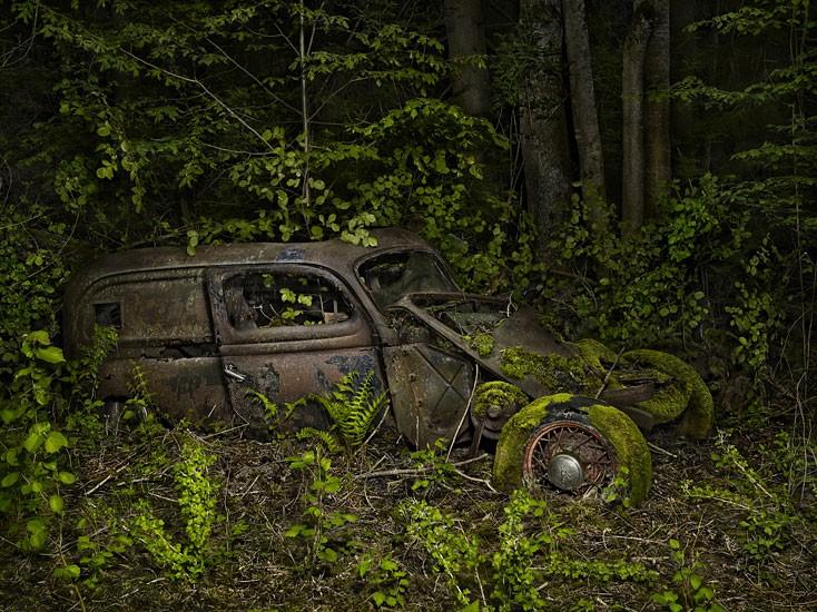 «Райская парковка» от фотографа Питера Липпмана [фото]